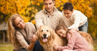 5 Amazing Breeds to Consider When Choosing a New Family Dog