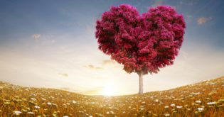 The Best Ways to Show Love Is with Gestures and the Right Gifts